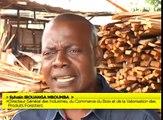 Reportage au coeur d'une entreprise de récupération des déchets du bois