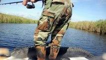 Alligator Hunting Lake Okeechobee Florida 13' Bull Gator AVI