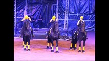 Spectacle Equestre du Domaine Equestre de Stambach et Aquatique Show pour les Ets Lingenheld