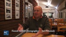 Hunting wildlife with a camera – a visit to the secret base of a wildlife photographer in Finland