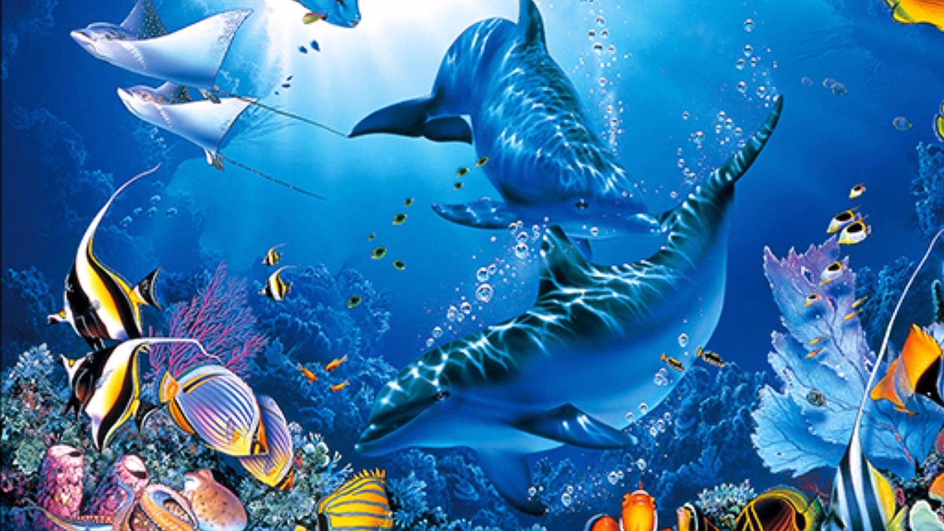 ラッセン動画dolphin 2 動画 Dailymotion