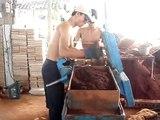 Safido interlocking brick machine (www.mesinbata.com  )