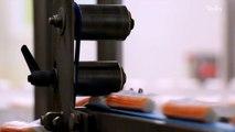 Comment est vraiment fabriqué le surimi ?
