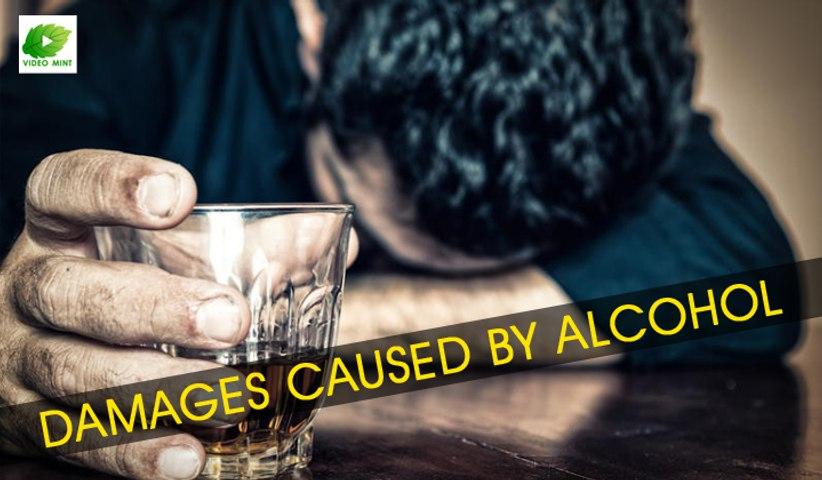 Damages Caused By Alcohol | Best Health Tips | Educational Videos