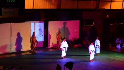 Demonstration Karaté au Gala d'Arts Martiaux Geisha et Samourai