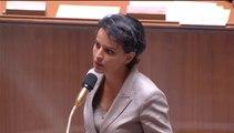 [ARCHIVE] Décrochage scolaire : question au Gouvernement à l'Assemblée nationale, mercredi 10 juin 2015