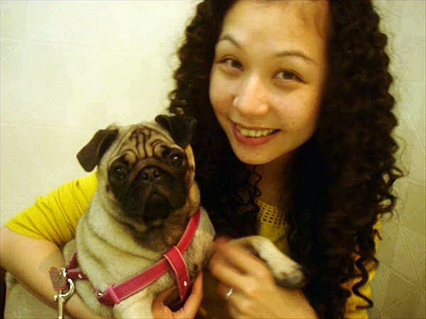 Circey – pug@Taichung,Taiwan