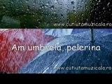 Vine ploaia pic pic pic/ Monica Anghel -Cutiuta Muzicala 9