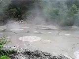 Hot Mud Pools, Taupo New Zealand.