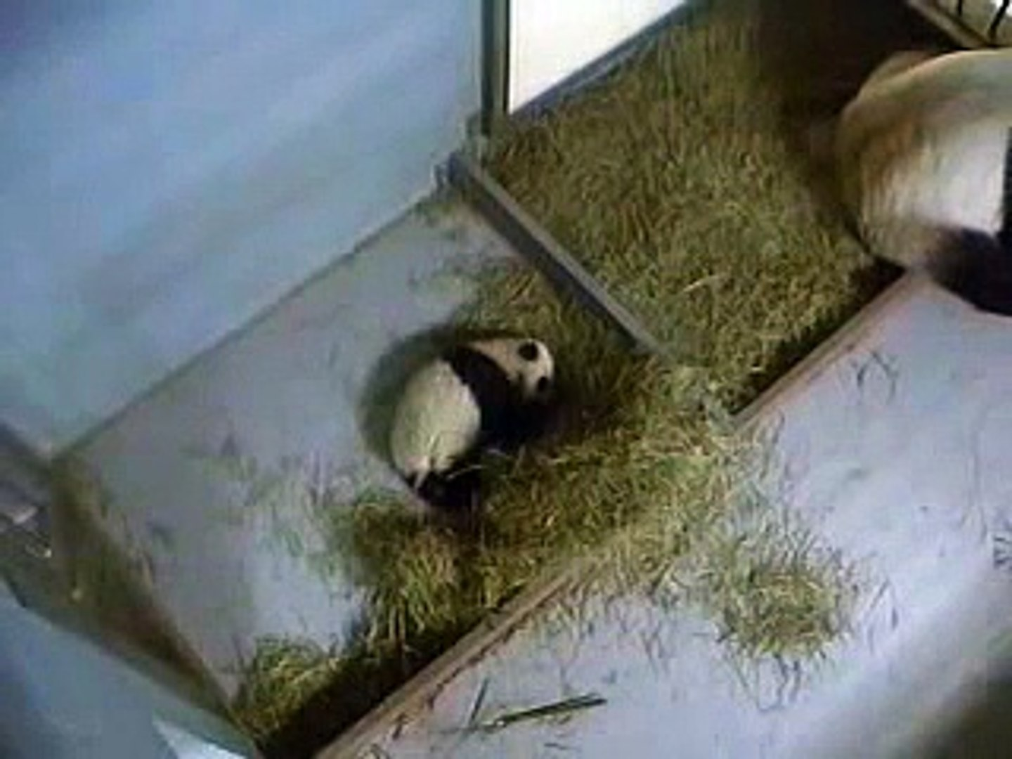 Lun Lun Wants Baby to Wake Up 12-08-06