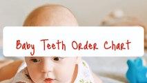Baby Teething Chart - Baby Teeth Order Chart