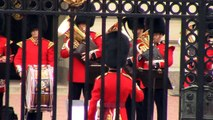 Relève de la garde à Buckingham Palace, Londres 2014