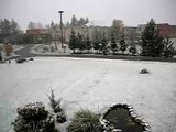 2006 10 29 Svedasai_Sniegas
