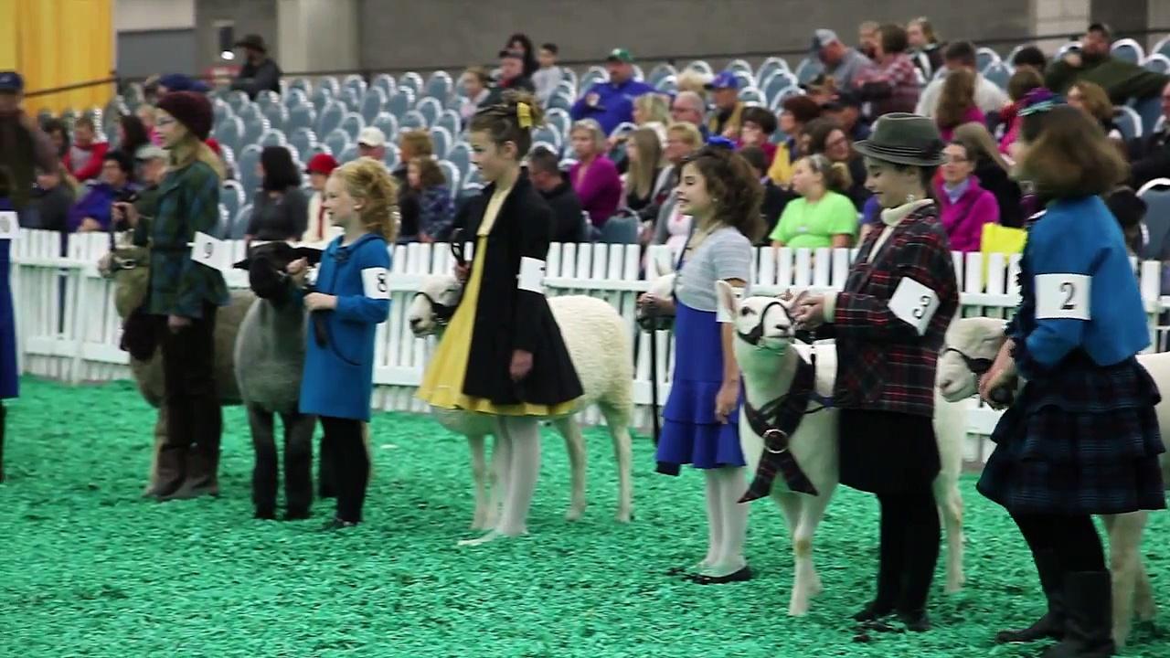 North American International Livestock Expo 2013
