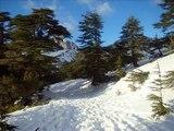 الثلوج في الجزائر - Snows over Algeria