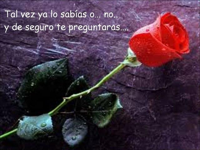Poema Romantico para dedicar y decir que TE AMO