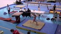 Manon Gymnastique : championnat régional gymnastique 2011