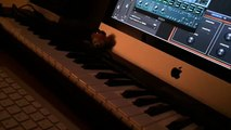 The Beatles /Strawberry Fields Forever intro Mellotron Logic EXS24