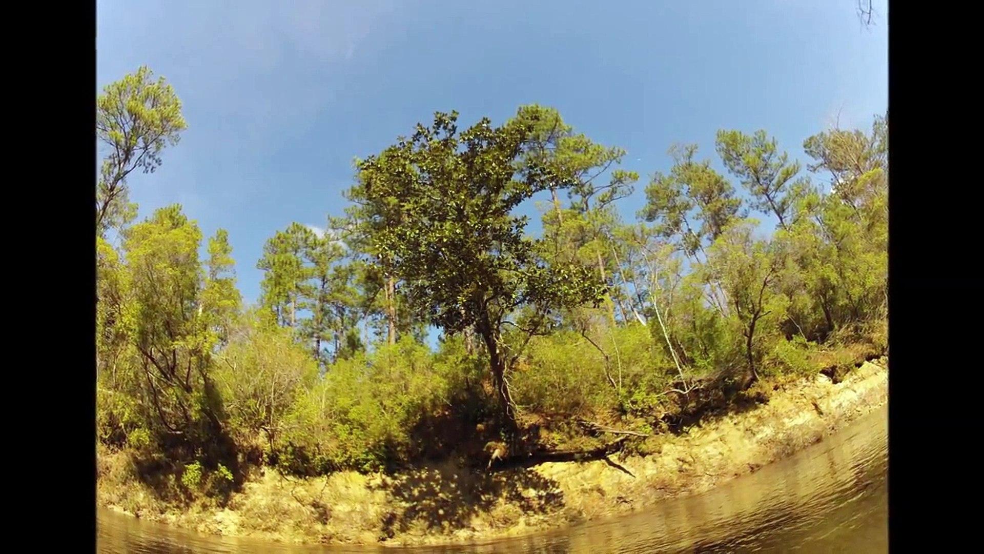 Black Creek Kayak & Canoe Camping Trip (De Soto Na