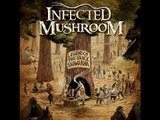 Infected Mushroom - Riders on the Storm (Remix)