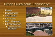 Green roofs and green parking lots.