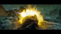 HD - Plastik Pokal Teil 6 - Harry Potter und der Plastik Pokal Teil 6- HD - Version ( coldmirror )