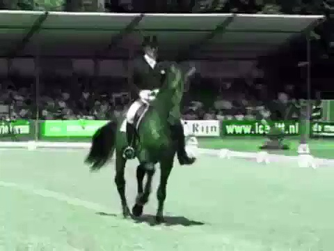 Horses-Electric Guitar