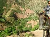 maroc sud maroc marrakech damnat  voyage