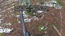 Chasse au sanglier en battue dans les Vosges