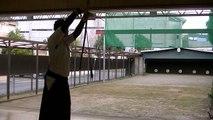 Kyudo (Japanese archery) training