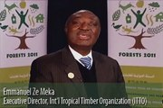International Year of Forests (Forests 2011) — H.E. Mr. Emmanuel Ze Meka