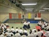 Christian Tissier 7th dan Aikikai Shihan - Aikido Seminar in Vienna, 19-20. 12. 2009