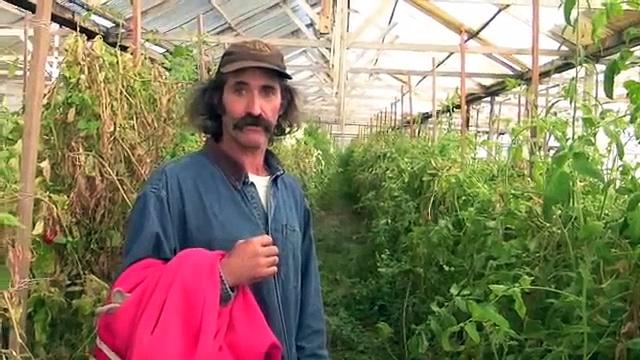 Mellow's Nursery & Farms Farm Tour