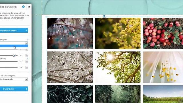 Como personalizar uma Galeria Grid em seu site | Wix.com