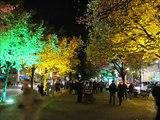 """""""Festival of Lights-BERLIN-2010""""  Slideshow von Karin und Wolfgang Schmökel"""