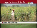 Wheat farmers happy as showers lashes Punjab