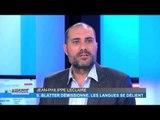 TV5 MONDE, KIOSQUE DU 7 JUIN 2015 - FIFA, LE GRAND DÉBALLAGE