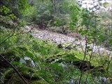 Parc Naturel Régional Ballons des Vosges