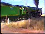 South African Railways steam locomotives around Kimberley 1990