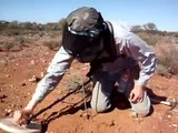 Gold detecting in western Australia with Minelab GPX-5000