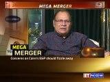 Vedanta-Cairn India Merger | Expert View On Shareholders' Position