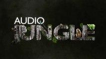 Music - Action Sport Hip-Hop | AudioJungle