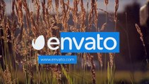 After Effects Project Files - Flat Motion Reveal - VideoHive 10658019