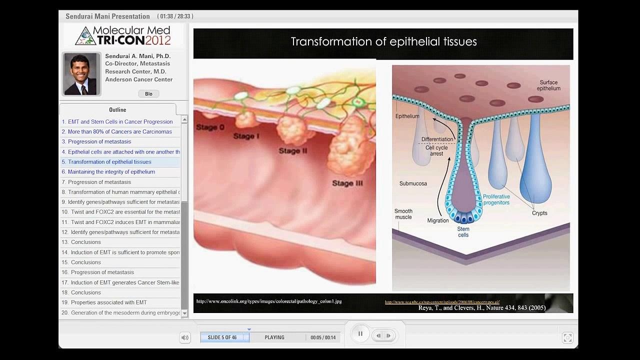 preview mp4Understanding EMT: Mechanisms and Metastasis to MET
