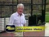Crazy Animals - Animali Pazzi