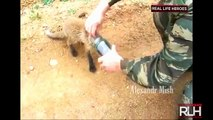 ᴴᴰ REAL LIFE HEROES | Best of 2014 | Faith In Humanity Restored