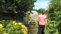 Bienvenue dans mon jardin : Visite d'un jardin à Guiclan