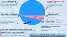 Apocalypse, Life on Earth, Resources, Economics, Politics, Parasites, Health, Human Behavior Rights