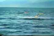 kayaker gets a whale of a surprise