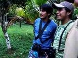 Manu Wildlife (Manu Reserve Peru)